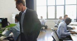 Diriga la camminata nell'ufficio aperto moderno mentre gruppo di gente di affari che lavora ai computer, capo che esamina il grup stock footage