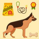 Dirigez l'accessoire canin de pure race de pur sang d'illustration de berger allemand d'animal familier heureux attentif drôle de illustration libre de droits