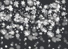 Dirigez l'effet en baisse de neige d'isolement sur le fond transparent avec le bokeh brouillé Photo stock