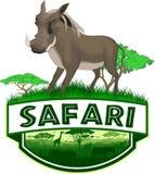Dirigez l'emblème africain de safari de la savane avec la phacochère commune Photo libre de droits