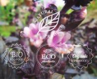 Dirigez l'ensemble de labels d'eco de typographie sur le fond trouble de fleur de ressort pour la carte, la bannière ou le web de illustration libre de droits