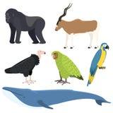 Dirigez l'espèce menacée aquatique de bosse d'illustration de baleine de faune mammifère différente profonde extérieure du nord d illustration libre de droits