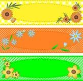 Dirigez l'espace ovale de la copie Eps10 garni avec des fleurs Images stock
