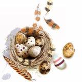 Dirigez l'illustration avec des plumes de nid d'oiseau d'oeufs de pâques dans le vinta Photo stock