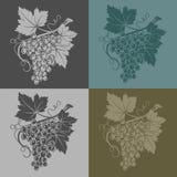 Dirigez l'illustration avec des raisins et des feuilles sur un fond jaune-clair, production vinicole  Images libres de droits