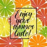 Dirigez l'illustration avec le citron d'agrume, le pamplemousse et l'affiche orange avec une inscription sur un thème d'été color illustration stock