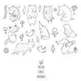 Dirigez l'illustration avec les animaux mignons et naïfs de forêt Photos stock