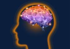Dirigez l'illustration d'une tête humaine de silhouette avec un cerveau Photo stock