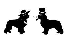 Dirigez l'illustration de Madame et de monsieur avec des chiens de Terre-Neuve (par exemple comme une carte de travail signe) Image libre de droits