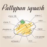 Dirigez l'illustration des éléments nutritifs énumèrent pour la courge pattypan Photo stock
