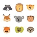 Dirigez l'illustration des visages animaux comprenant le tigre, lion, Jaguar, lézard, paresse, singe, koala, lynx, raton laveur Photos libres de droits