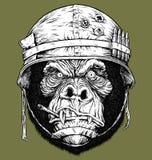 Dirigez l'illustration du gorille de 70 ` s/du soldat de singe Image stock