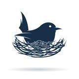Dirigez l'image d'un oiseau hachent son oeuf dans le nid Images libres de droits
