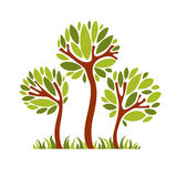 Dirigez l'image de l'arbre créatif, concept de nature Illu symbolique d'art Photo stock