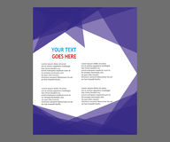 Dirigez la brochure de tract de disposition de couverture de livre de rapport annuel  Photos libres de droits