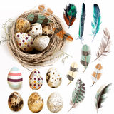 Dirigez la collection avec des plumes de nid d'oiseau d'oeufs de pâques dans le vintage illustration de vecteur
