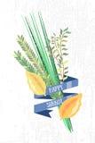 Dirigez la collection de labels et d'éléments pour Sukkot (traditionnel juif Photo libre de droits