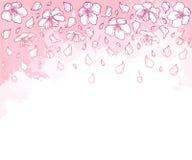 Dirigez la composition horizontale avec la fleur, le pétale et le bourgeon en baisse d'Apple d'ensemble dans le blanc sur le fond Illustration Stock