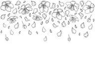 Dirigez la composition horizontale avec la fleur, le pétale et le bourgeon en baisse d'Apple d'ensemble dans le noir d'isolement  Illustration Stock
