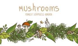 Dirigez la frontière sans couture avec des champignons et des éléments de forêt Image libre de droits