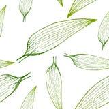Dirigez la peinture du fond sans couture de modèle d'herbe verte avec tiré par la main Photographie stock