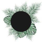 Dirigez le cadre foncé de cercle avec le fond tropical de feuilles Image stock