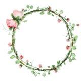 Dirigez le cadre rond d'aquarelle avec des roses et des éléments de feuillage Frontière florale d'aspiration de main illustration libre de droits