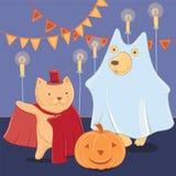 Dirigez le chien et le chat drôles dans des costumes de Halloween Image stock