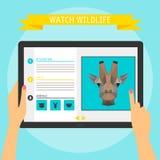 Dirigez le concept d'illustration des mains tenant le tabl numérique moderne Photo stock