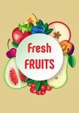 Dirigez le fond avec des fruits et des baies et rond Images libres de droits