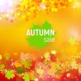 Dirigez le fond de vente d'automne avec les feuilles d'automne en baisse rouges, oranges, vertes et jaunes Image libre de droits