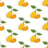 Dirigez le fond sans couture de modèle avec le kumquat tiré par la main dans le style de vintage Sur le blanc Utilisation pour le illustration stock