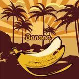 Dirigez le fond tropical floral avec des palmiers, silhouettes de paumes, banane, plage, mer, océan, vecteur, d'isolement, baner illustration libre de droits