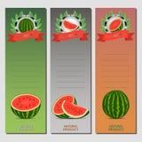 Dirigez le logo d'illustration pour la pastèque rouge mûre entière de fruit, tige verte, la moitié de coupe, baie coupée en tranc Image libre de droits