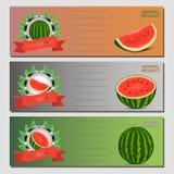 Dirigez le logo d'illustration pour la pastèque rouge mûre entière de fruit, tige verte, la moitié de coupe, baie coupée en tranc Photographie stock