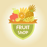 Dirigez le logo pour un stock de fruits, jus de fruit Photos libres de droits