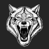 Dirigez le loup sauvage pour le tatouage, T-shirt, logo de sport illustration de vecteur