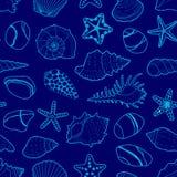Dirigez le modèle bleu des coquilles de mer, étoiles, pierres Image libre de droits