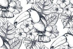 Dirigez le modèle sans couture avec des compositions des fleurs tropicales tirées par la main et des oiseaux exotiques illustration de vecteur