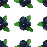 Dirigez le modèle sans couture avec des myrtilles de bande dessinée avec les feuilles vertes d'isolement sur un fond blanc Illust illustration de vecteur
