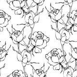 Dirigez le modèle sans couture avec la main dessinant les fleurs noires et blanches Image stock