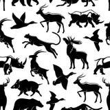 Dirigez le modèle sans couture des animaux sauvages et des oiseaux Illustration de Vecteur