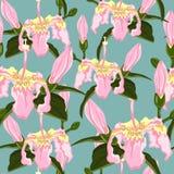 Dirigez le modèle sans couture en bon état d'obscurité avec les fleurs tropicales Photos libres de droits
