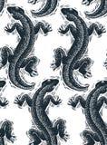Dirigez le modèle sans couture reptile, la vue supérieure b continu de lézards illustration libre de droits
