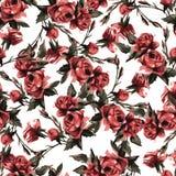 Dirigez le modèle floral sans couture avec les roses roses, aquarelle Photos libres de droits