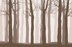 Dirigez le paysage de forêt avec les silhouettes brunes des arbres illustration de vecteur