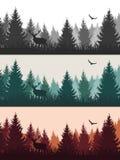 Dirigez le paysage de forêt de vintage avec des silhouettes des arbres et des WI illustration de vecteur