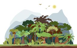 Dirigez le paysage tropical de forêt tropicale avec des paumes et d'autres arbres tropicaux Illustration panoramique de forêt tro illustration de vecteur