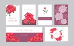 Dirigez les bannières horizontales et verticales botaniques réglées avec la pivoine rose, fleurs d'aster Conception romantique po illustration stock