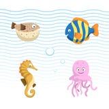 Dirigez les différents animaux mignons de mer et d'océan réglés Poissons colorés, hippocampe, méduse, blowfish illustration de vecteur